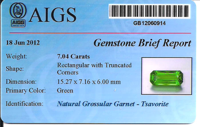 Gem Certification at AJS Gems