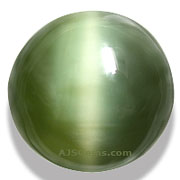 Actinolite Cat's Eye