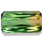 8.34 ct Bi-Color Tourmaline from Nigeria