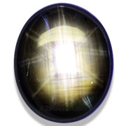 15.16 ct 12 Ray Black Star Sapphire from Thailand