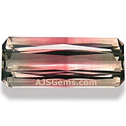 Bi Color Tourmaline - 8.53 carats