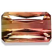 Bi Color Tourmaline - 3.96 carats