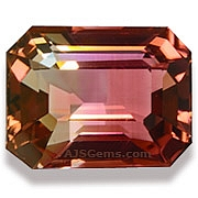 Bi Color Tourmaline - 3.32 carats