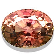 Bi Color Tourmaline - 2.87 carats