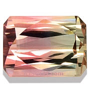 Bi Color Tourmaline - 2.52 carats