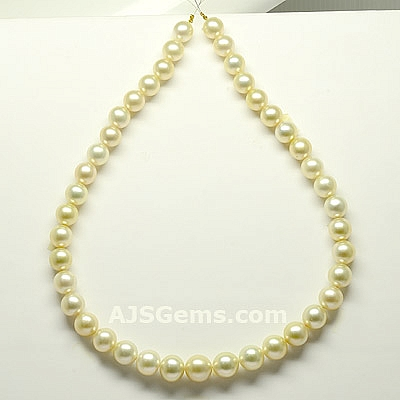 South Sea Pearl - 394.85 carats