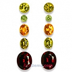 Spessartite - Rhodolite and Mali Garnet Set - 13.14 carats