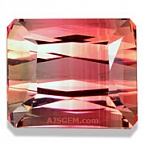 Fancy Tourmaline - 3.96 carats