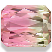 4.70 ct Bi-Color Tourmaline, Nigeria