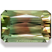 6.64 ct Bi-Color Tourmaline, Mozambique