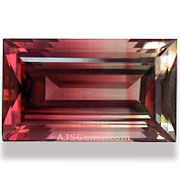 8.65 ct Bicolor Tourmaline from Nigeria