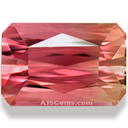 Bi-color Tourmaline Mozambique 7.57 cts